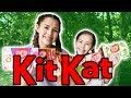 Kit Kat Challenge - We Talked To A Bird!!! MP3