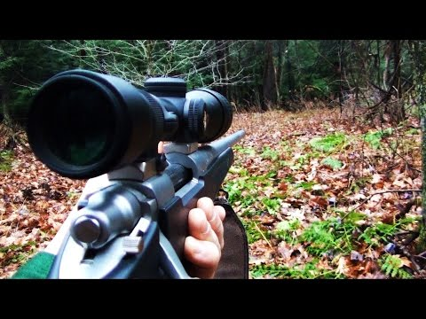 Deer Hunting Buck Season Pennsylvania 2014- Hunting Pressured Whitetai...
