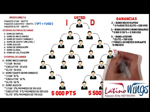 PLAN DE COMPENSACIÓN WINGS NETWORK 2014, BIENVENIDOS A LA ELITE MUNDIAL DEL NETWORK MARKETING