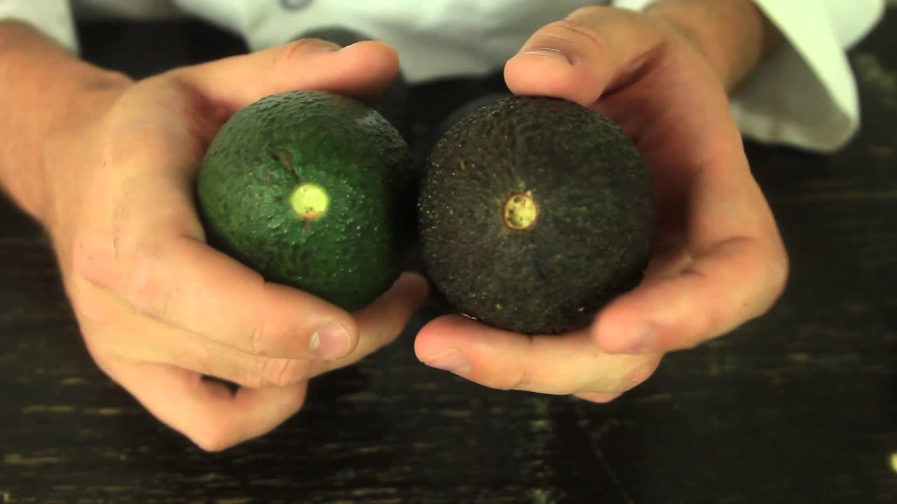 How to Tell if Avocado Overripe or Not - Food Life Hack ...