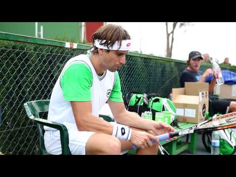 The World of David Ferrer