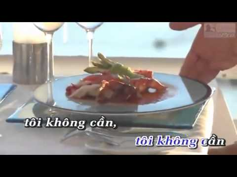 Ke Trang Tay   Ngoc Son Karaoke] Dual Audio   Youtube video