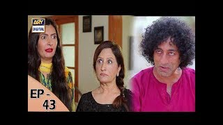 Dilli Walay Dularay Babu Ep 43 - 15th July 2017 - ARY Digital Drama