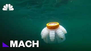 A Squishy Robot That Can Help Study Underwater Reefs | Mach | NBC News