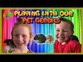 Playing with our Gerbils: Mario and Luigi the Gerbils lose their keys and play Gerboulder!.mp3