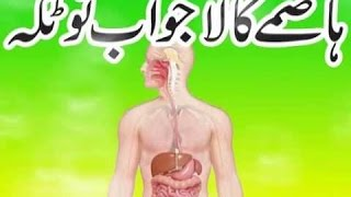 Hazma Ka Ilaj  Digestive Problems and Tretments In Urdu  Digestion Badhazmi Ka Ilaj