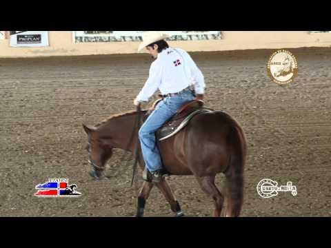 Cuarto de Milla - Como lograr hacer los Turns (Spins de Reining) Correctamente con y Sin Manos