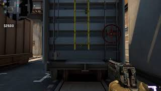 Counter strike  Global Offensive 2018 08 19   03 08 01 01 Trim