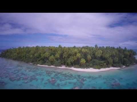 National Geographic Unique Lodges of the World | The Brando: Conservation at a Glance