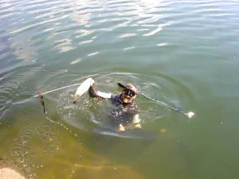 Peixe por encomenda!!!!