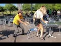 Chair Pulling Prank in Birmingham!!!