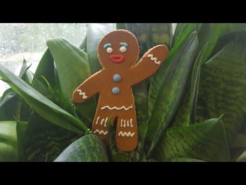Идеальное пряничное тесто🍀самый лучший и простой рецепт🍀 Best gingerbread cookie dough