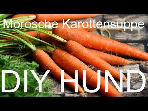 DIY Rezept für die Morosche Karottensuppe