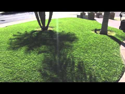 Lawn Care in El Cajon, CA
