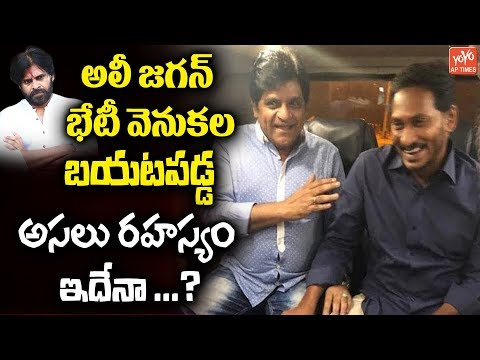 Shocking Facts Behind Comedian Ali & YS Jagan Meeting | Pawan Kalyan | AP Elections | YOYO AP Times