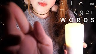 ASMR Slow 21 Trigger Words with Personal Attention 🌙