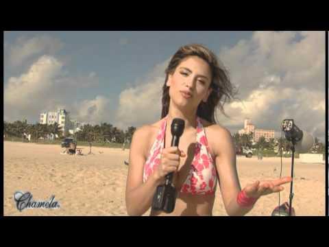 Chamela: Ropa interior femenina para ventas por catalogo