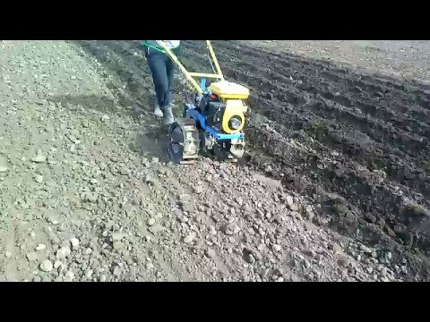 Homemade walk behind tractor.  Plowing