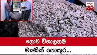 World's largest star sapphire cluster found in Sri Lanka