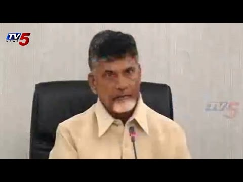 Chandrababu Video Conference with DWCRA Groups : TV5 News