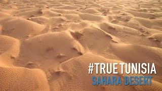 Tunisian Sahara: in the middle of sea of sand... True Tunisia / season 2 (day 7 & 8)