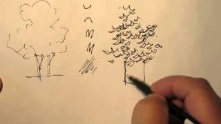 Mike Lin: How to draw trees with a pen