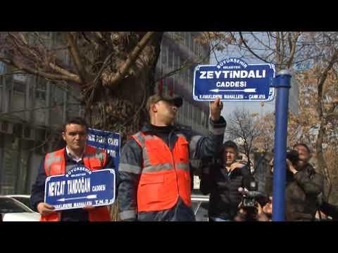 ABD Büyükelçiliği Önündeki Caddeye 'Zeytindalı' Tabelası Asıldı