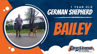 German Shepherd with Aggression Issues - German Shepherd Dog Trainers