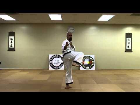 Bateman Taekwondo: Side Kick (Yop Chagi)