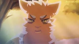 [Коты воители]☆Зашей~Уголёк☆ЗакаЗ~