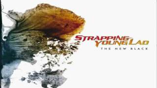 Watch Strapping Young Lad You Suck video