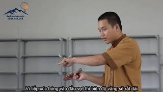 Bóng bàn Việt Nam cơ bản - Kỹ thuật giao bóng cơ bản tập 1