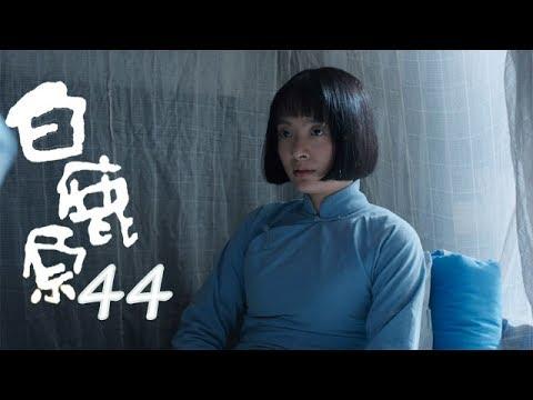 白鹿原   | White Deer 44【TV版】(張嘉譯、秦海璐、何冰等主演)