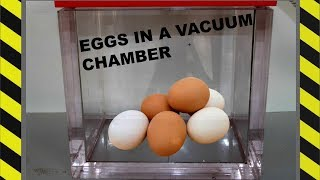 WHAT HAPPENS IF YOU PUT EGGS IN A VACUUM CHAMBER?