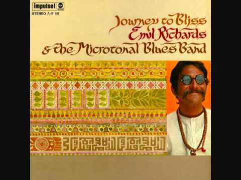 Emil Richards&the Microtonal Blues Band - Enjoy, Enjoy