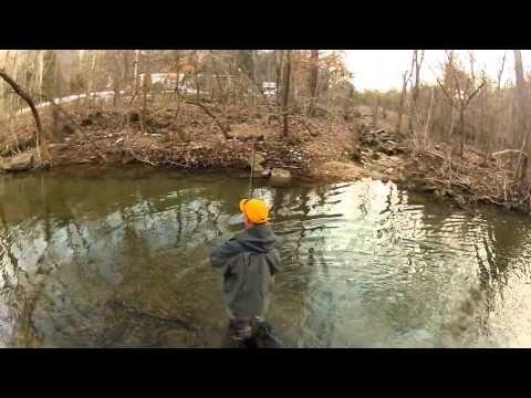 Branson, Missouri Fly Fishing | Winter Fly Fishing the Small Creeks Near Branson, Missouri