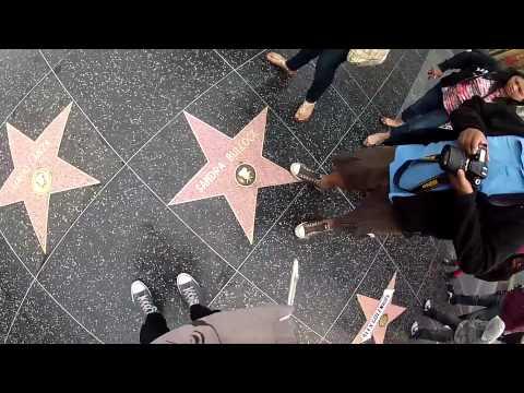протест против звезд голливуда protest over hollywood stars