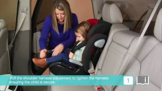 Smyths Toys - Joie Elevate 1-2-3 Car Seat- Cherry