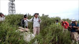 2017年5月於茂登岳自然観察会