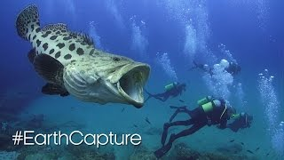 Join Our #EarthCapture Community - BBC Earth Unplugged