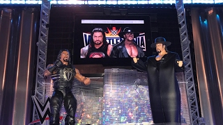 The Undertaker vs Roman Reigns Wrestlemania 33 match