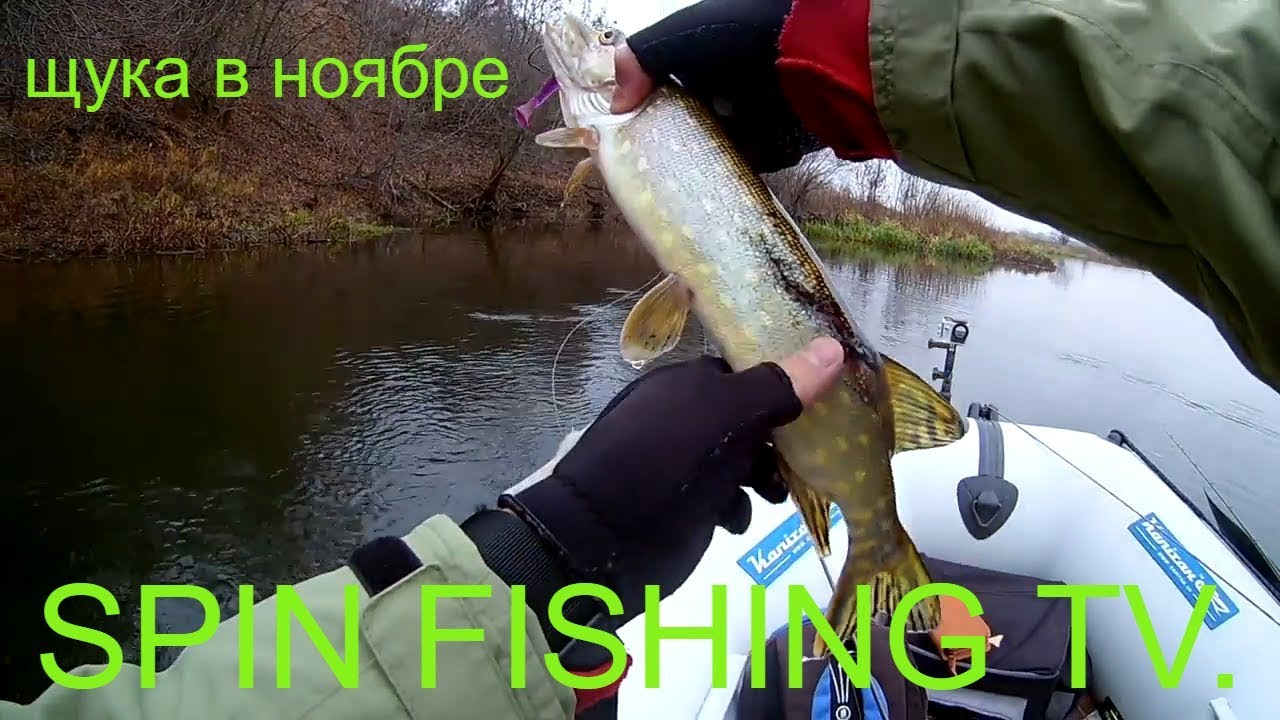 провизия на рыбалку