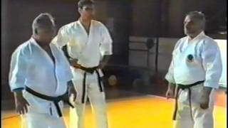 IKS RUSSIA - Taiji Kase seminar 5 part, (Macedonia,1995 year ).mpg