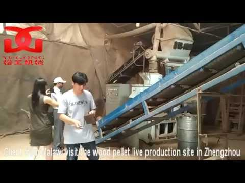 wood pellet mahchine,wood pellet mill--client from Malawi visited live production site