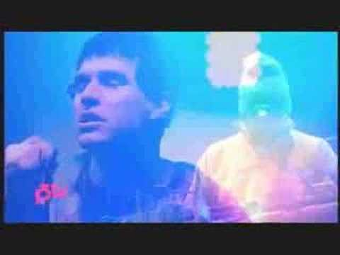Animal Collective - In the Flowers (Hove 2008) Video