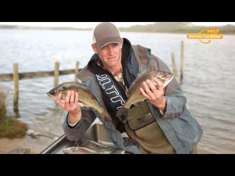 видео рыбалка на корюшку