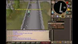 Runescape How to use a Salamander