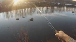 Fly Fishing for Winter Carp - Get Your Fix #1