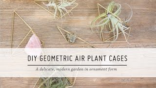 DIY Geometric Air Plant Cages | Home Decor Tutorial | Mr Kate