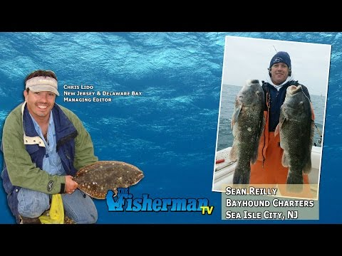 December 15, 2014 New Jersey/Delaware Bay Fishing Report with Chris Lido